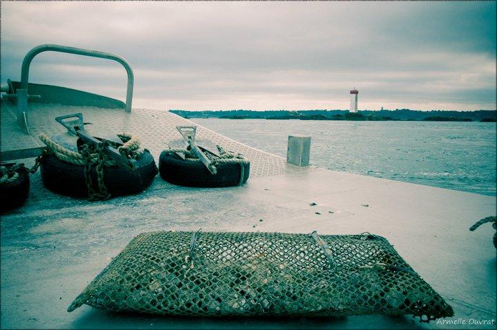 photo d'une poche à huître prise sur une barge ostréicole en baie de paimpol